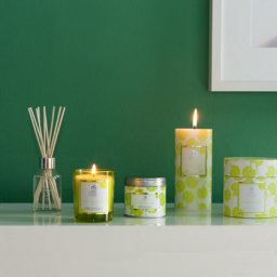Persian Lime Scented Candles