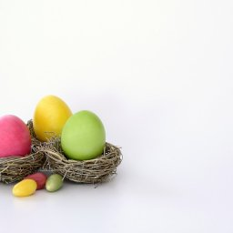 easter nest with coloured eggs